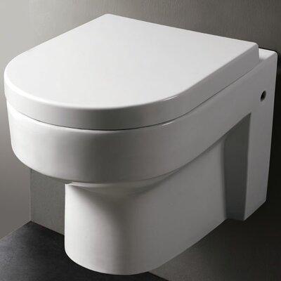 Modern Dual Flush Elongated Toilet Bowl
