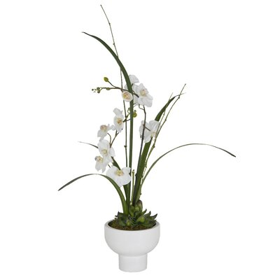 Faux White Orchids In Pot