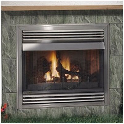 Awesome Napoleon Gss36 Outdoor Vent Free Wall Mount Gas Fireplace Insert Download Free Architecture Designs Parabritishbridgeorg