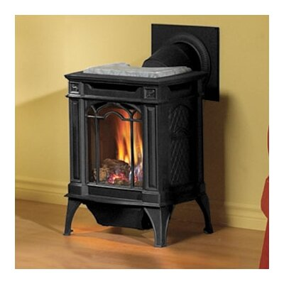 Arlington Direct Vent Cast Iron Gas Stove Fuel Type: Natural Gas, Color: Porcelain Majolica Brown