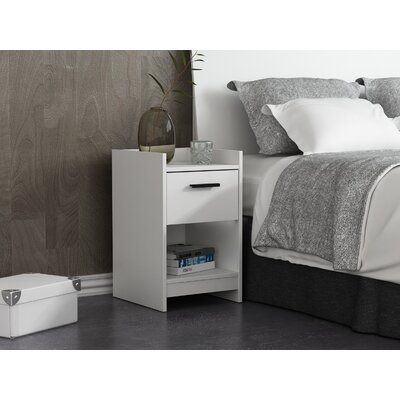 Central Park 1 Drawer Nightstand Finish: Frost White