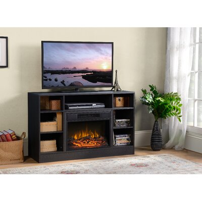 Oakley Media Electric Fireplace TV Stand Finish: Black