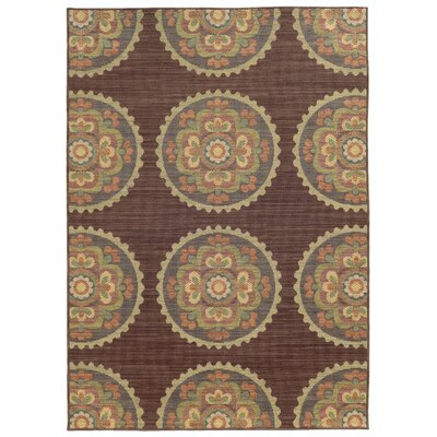 Tommy Bahama Cabana Brown / Multi Floral Indoor/Outdoor Area Rug Rug Size: 910 x 1210