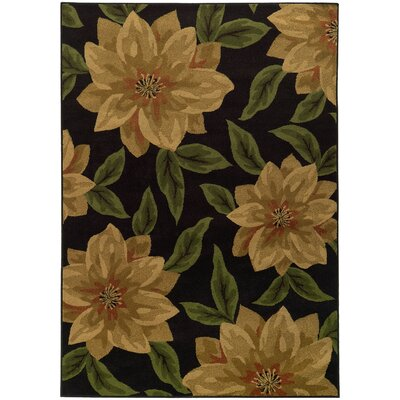 Villa Black/Tan Area Rug Rug Size: 67 x 96