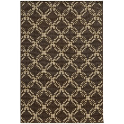 Seaside Brown/Beige Indoor/Outdoor Area Rug Rug Size: 53 x 76