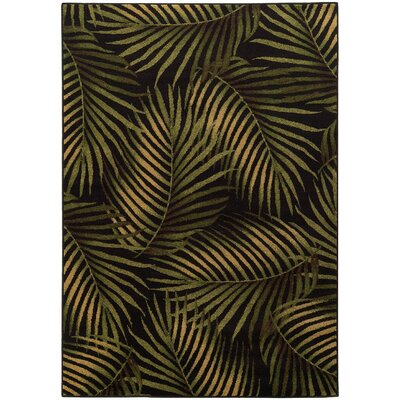 Villa Black/Green Area Rug Rug Size: 53 x 76