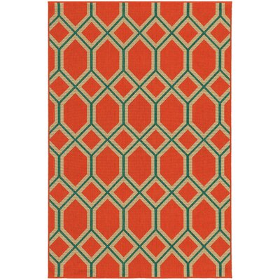 Seaside Orange/Teal Indoor/Outdoor Area Rug Rug Size: 37 x 56