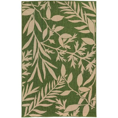 Seaside Green & Beige Indoor/Outdoor Area Rug Rug Size: 37 x 56