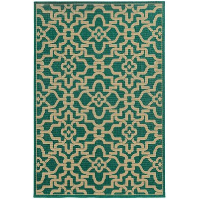 Seaside Orange & Beige Indoor/Outdoor Area Rug Rug Size: 53 x 76