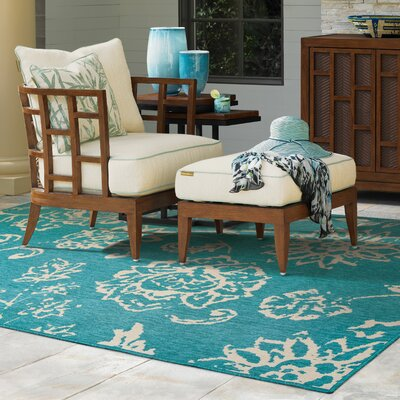 Seaside Teal/Beige Indoor/Outdoor Area Rug Rug Size: 25 x 45
