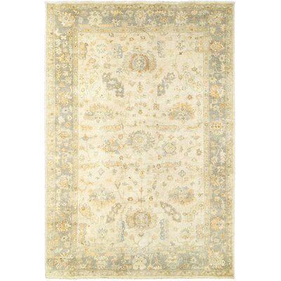 Palace Hand-Knotted Beige/Gray Area Rug Rug Size: 6 x 9
