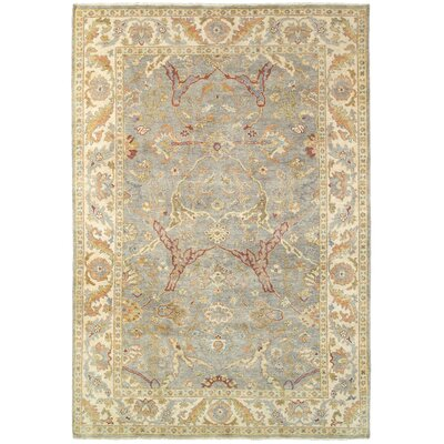 Palace Hand-Knotted Gray/Beige Area Rug Rug Size: 6 x 9