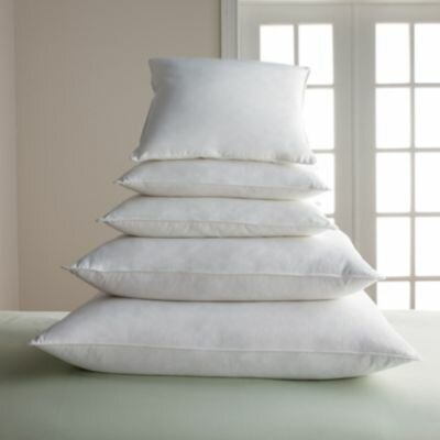 Feather and Down Pillow Cover Fillers Size: 13 H x 13 W x 3 D