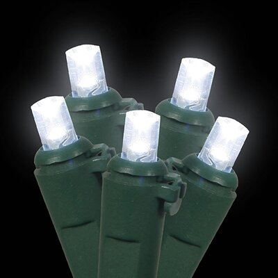 60 LED Wide Angle Christmas Light String Color: Green / Cool White