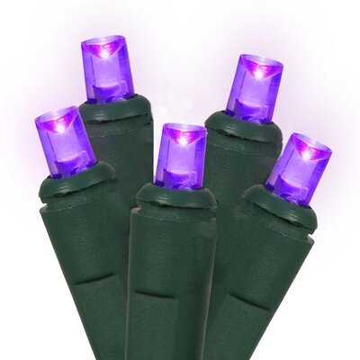 60 LED Wide Angle Christmas Light String Color: Green / Purple