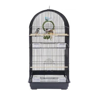 Vogelkäfig | Garten > Tiermöbel | Schwarz | Rainforest Cages