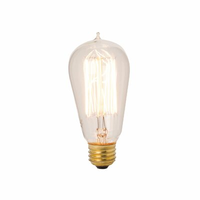 Exposed Filament Bulb