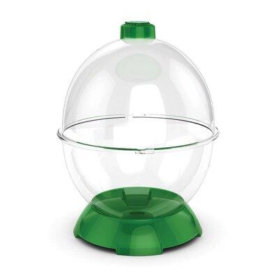 Wonder Bubble Modular Habitat Color: Green