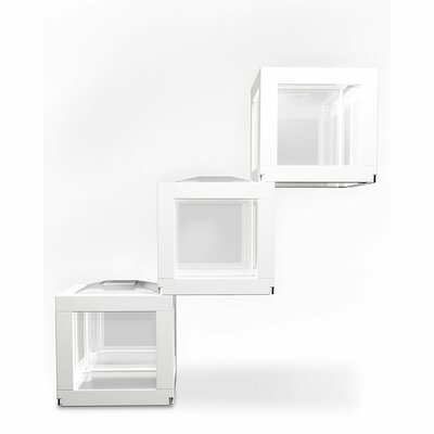 DecoCubes Terrarium