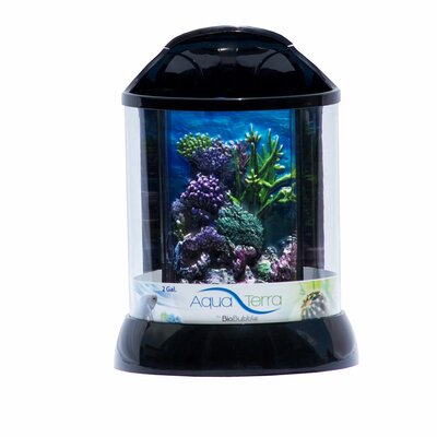 Aqua Terrarium Color: Black, Size: 2 Gallon