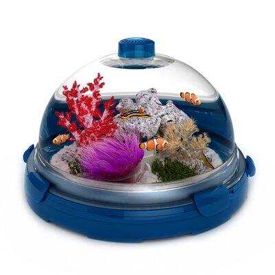 Buy low price bio bubble pets premium plus kit color blue for Where to buy fish tanks