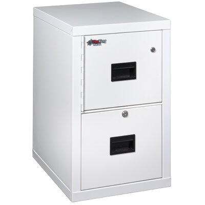 Turtle Safe In A File Fireproof Vertical File Cabinet Safe Key Lock 184 Product Photo