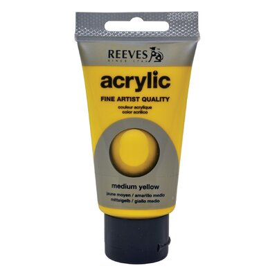 Acrylic Paint Color (Set of 3) 8340120