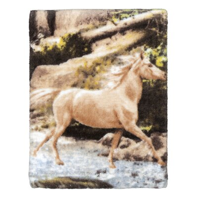 Horse Canyon Print Wash Towel (Set of 2)