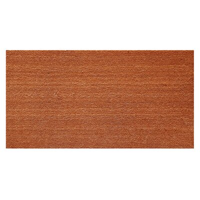 Solid Doormat Mat Size: Rectangle 16 x 26