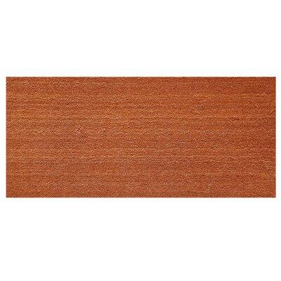 Solid Doormat Rug Size: Rectangle 26 x 4