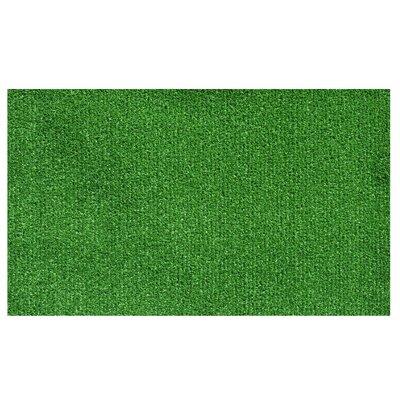 Doormat Rug Size: 2 x 3