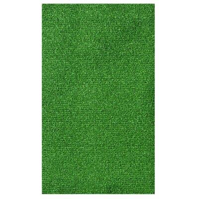 Doormat Rug Size: 3 x 6