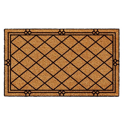 Bustamante Doormat Rug Size: Rectangle 2 x 3
