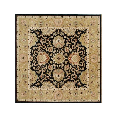 Alliyah Delhi Black Area Rug Rug Size: Square 10