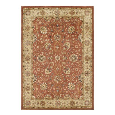 Alliyah Rust Area Rug Rug Size: 10 x 14