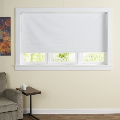 Wayfair Basics Cords Free Tear Down Window Roller Shade Size: 73 W x 72 L