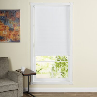 Yogyakarta Cords Free Tear Down Window Roller Shade Size: 37 W x 72 L