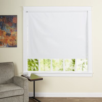 Wayfair Basics Cords Free Tear Down Window Roller Shade Size: 55 W x 72 L