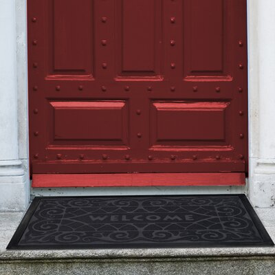 Arcelia Doormat Color: Grey