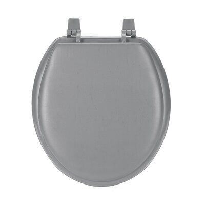 Fantasia Soft Standard Toilet Seat Finish: Charcoal