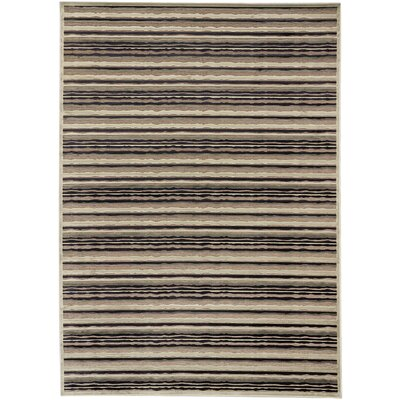 Burmont Dark Navy/Light Gray Open Field Rug