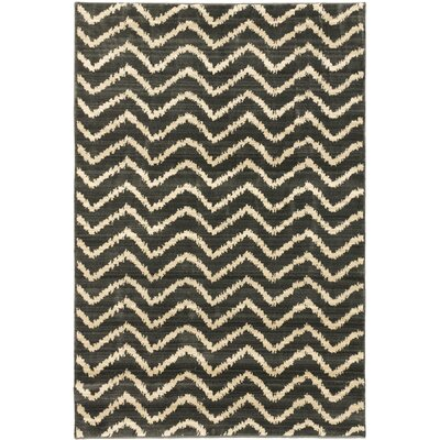 Atlas Marrakech Open Field Cream/Dark Gray Area Rug Rug Size: 53 x 76