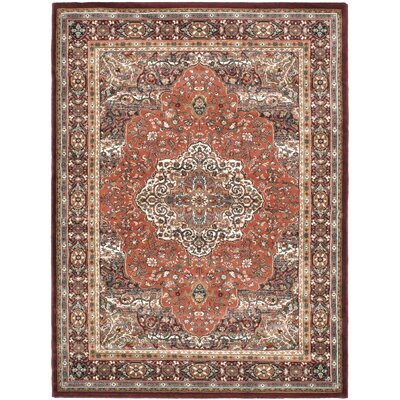 Copper/Dark Red Medallion Floral Rug Rug Size: 56 x 75