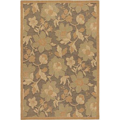 Versailles Antique Dark Brown Indoor/Outdoor Area Rug Rug Size: 49 x 73
