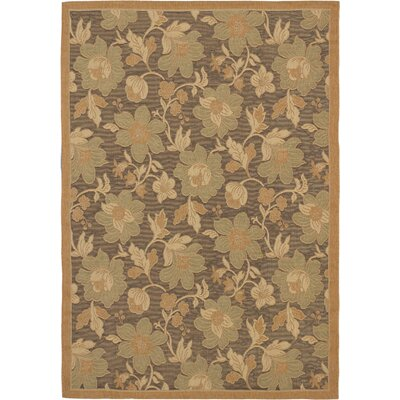 Versailles Antique Dark Brown Indoor/Outdoor Area Rug Rug Size: 64 x 91
