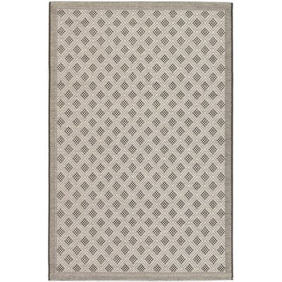 Rollins Black Indoor/Outdoor Area Rug Rug Size: Rectangle 67 x 94