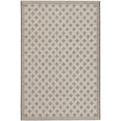 Rollins Black Indoor/Outdoor Area Rug Rug Size: Rectangle 33 x 49