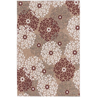 Schneider Casual Beige Area Rug Rug Size: Rectangle 4 x 6