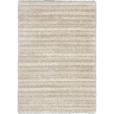 ECARPETGALLERY Yeti Shag Champagne Area Rug Rug Size: Rectangle 710 x 102
