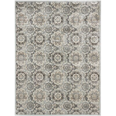 Rosalyn Transitional Light Gray Area Rug Rug Size: Rectangle 710 x 102